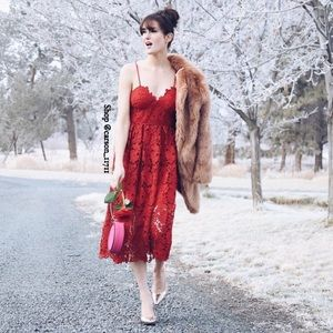 🦄Anthropologie Scarlet Lace Dress 4P Donna Morgan